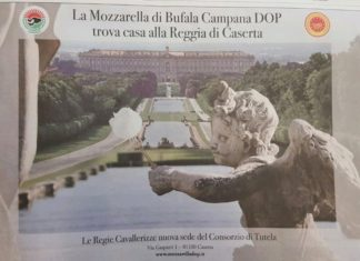 Mozzarella Campana Puttino